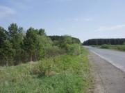 продам 18 соток ИЖС в селе Светлое Сухоложского района.